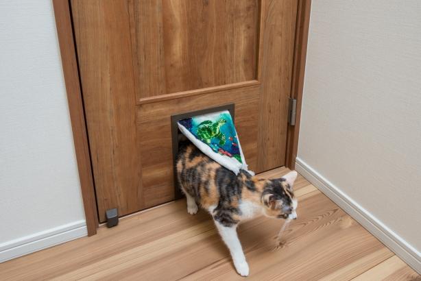 留守中もねこちゃんがトイレに入れるよう猫扉を採用