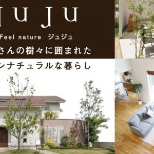 トータテハウジングの「JuJu」 天然無垢をふんだんに使った自然素材の家。